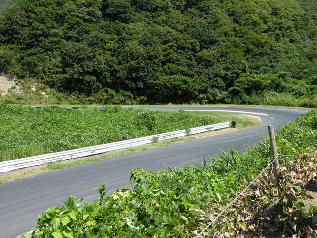 日本海間瀬サーキット コース