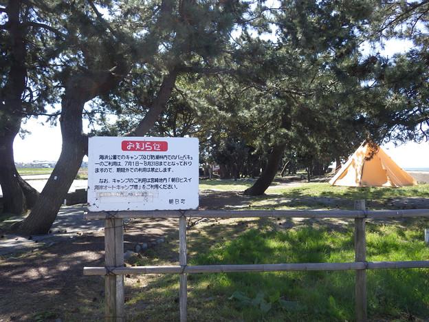 海浜公園キャンプ場