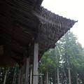 Photos: 雨降り盆