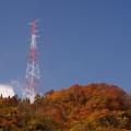 写真: 鉄塔と