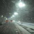 写真: 冬っぽい