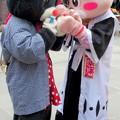 Photos: チビウサヒが気になる・・クロミ と うさぽん