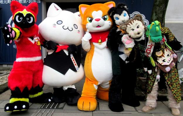 ネコ忍者☆かげ丸 と イチプラくん と にゃん吉 と エスプレッソ と カンフーキャット ゴロちゃん