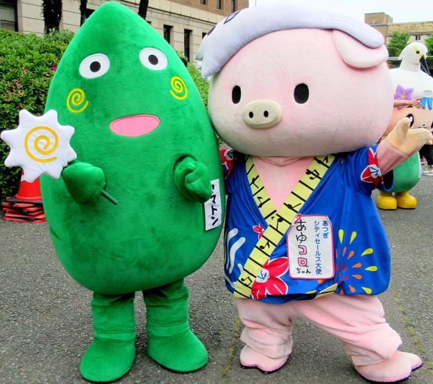 ヤマトン と あゆコロちゃん