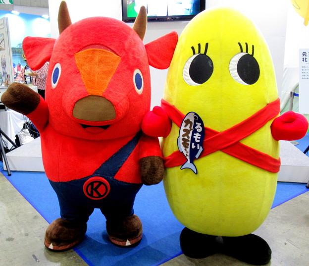 キーコ と KAZUMOちゃん