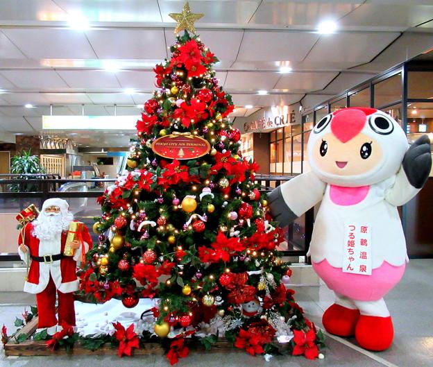 クリスマスツリー と つる姫ちゃん