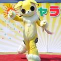 Photos: きゃらコレ08・犬飼ペペ