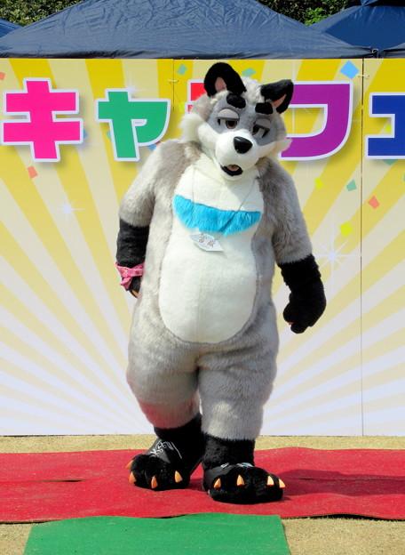 Photos: きゃらコレ11・富嶽