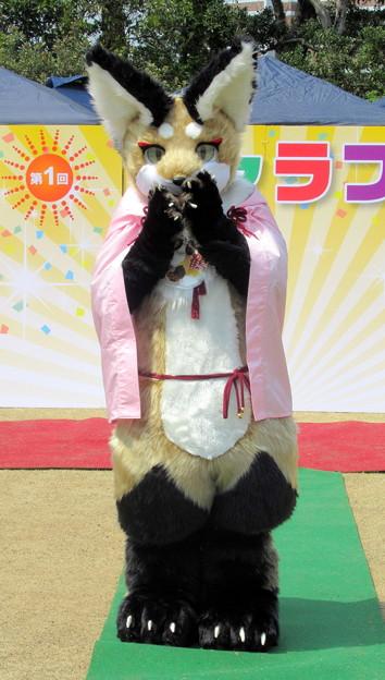 きゃらコレ13・咲鶴