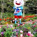 Photos: ごかぼちゃん と 春のひととき