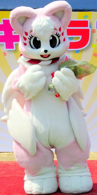Photos: さきちゃん・・お誕生日おめでとう