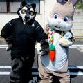 Photos: エビアス と どんちゃん