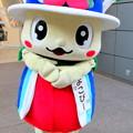 Photos: よこぴー