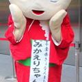 Photos: みかえりちゃん