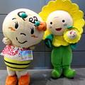 Photos: なっちゃん と ひまわり咲ちゃん
