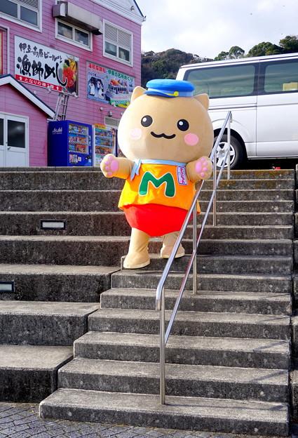 階段を降りる・・マリにゃん その1