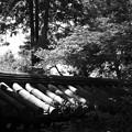 Photos: 東福寺の一角