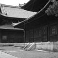 Photos: 妙心寺法堂