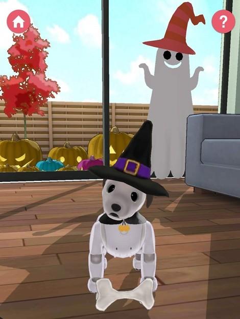 aibo Halloween