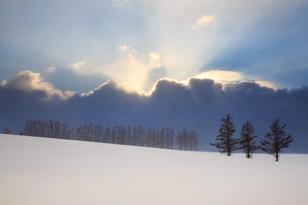 写真: 北海道美瑛の夕彩冬景