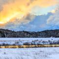 写真: 冬日夕彩