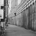 写真: 線路沿い2