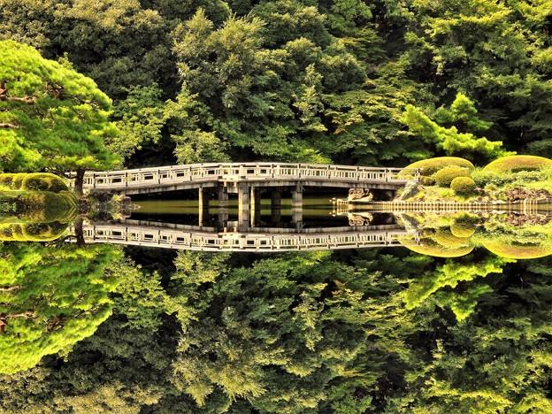 新宿御苑の風景