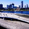 写真: 大桟橋とランドマーク