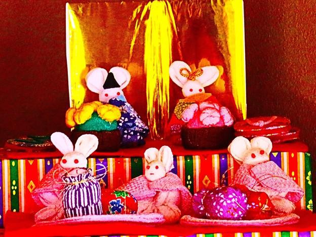 ネズミの雛祭り