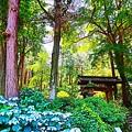Photos: 森林の中のお寺