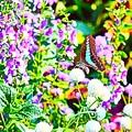 Photos: お花に囲まれて!