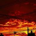 Photos: 夕焼