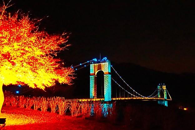 ライトアップと吊り橋