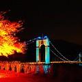 Photos: ライトアップと吊り橋