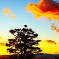 Photos: 富士と夕日