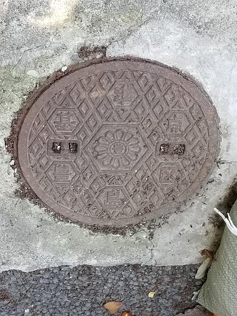 東京都豊島区のフタ(基準点)