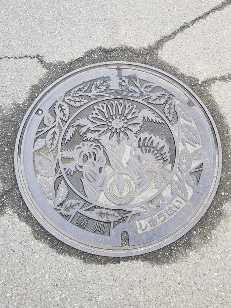 埼玉県春日部市新川のフタ(しゅうはい)