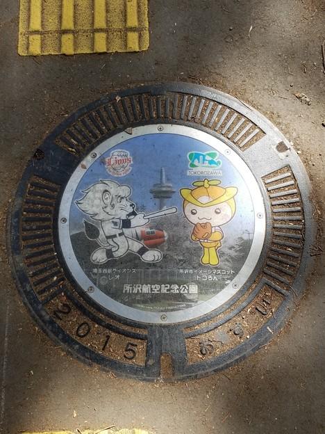 埼玉県所沢市のフタ(所沢航空記念公園 おすい)