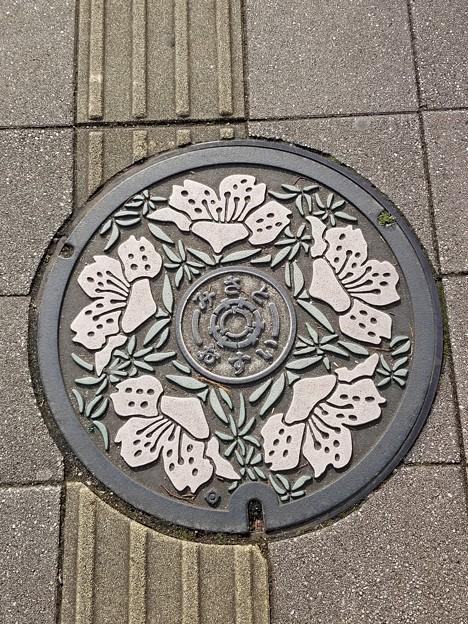 埼玉県三郷市のフタ(おすい)