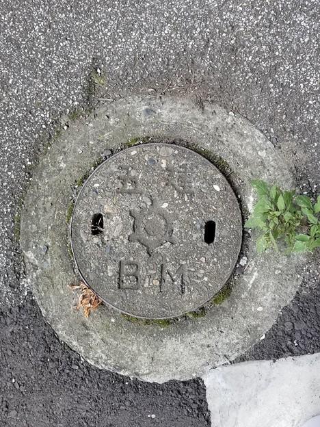 東京都のフタ(五建BM)