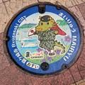 Photos: 茨城県龍ヶ崎市のフタ(おすい)