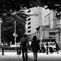 写真: 歩き続ける
