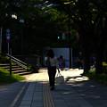 Photos: その日常