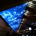 A new large monitor at Umeda Station.