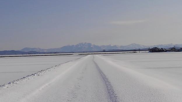 雪の粟ヶ岳