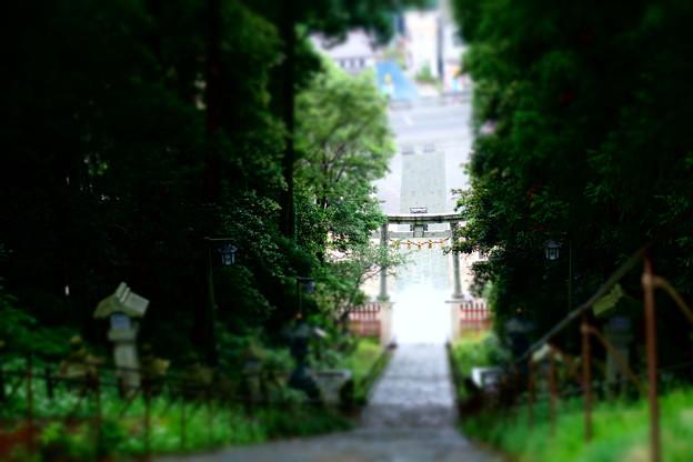 神社の表参道