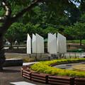 ときわ公園3