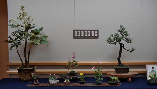 花遊び展1-2