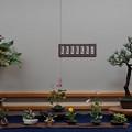 Photos: 花遊び展1-2