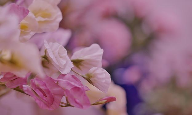 花遊び展4-2